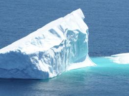 Image of 18 Day Luxury Antarctic Cruise