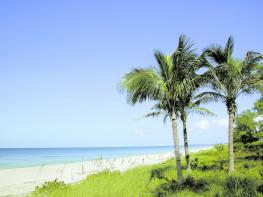 Image of The Beaches of Fort Myers and Sanibel