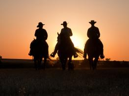 Image of Cowboy Life in Real Time