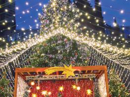 Image of Rhine Holiday Markets